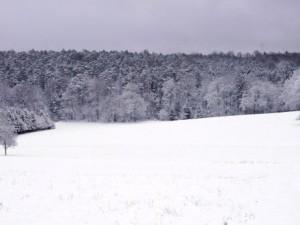 Schnee auf dem Bauernhof, Schlitten fahren, rodeln