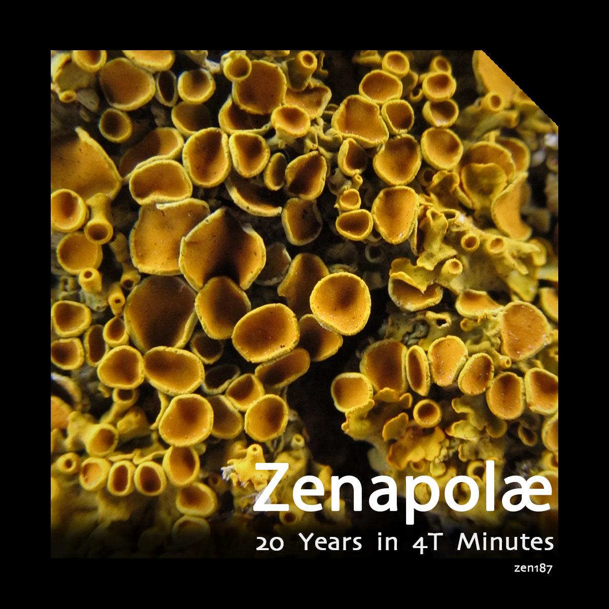 Zenapolæ – 20 Years in 4T Minutes