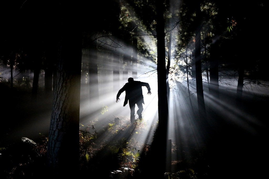 peurs dans les bois