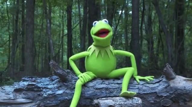 La rana sorda