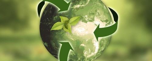 Agir sur son impact environnemental : un levier pour motiver ses équipes, attirer ses clients et améliorer sa rentabilité