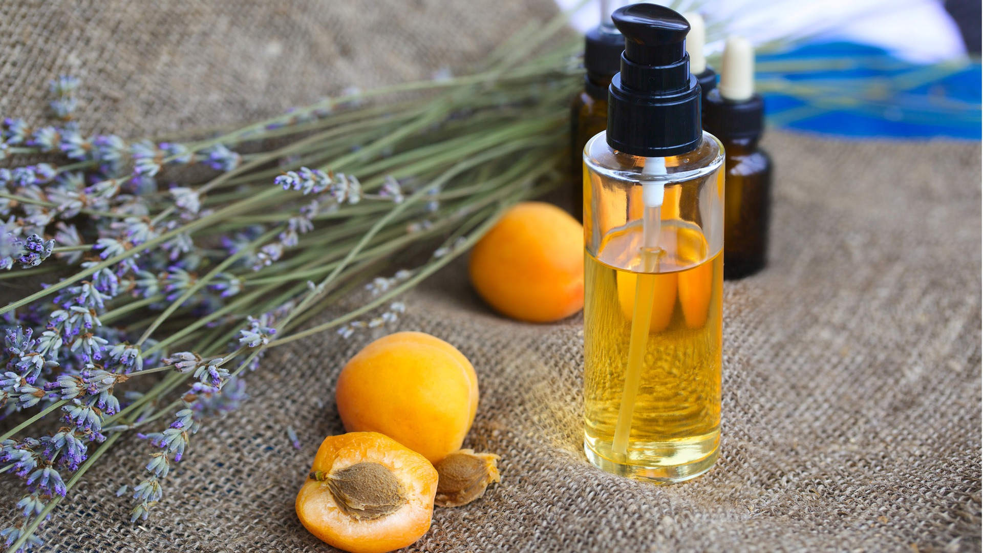 Pure apricot oil (bulk per 10ml)