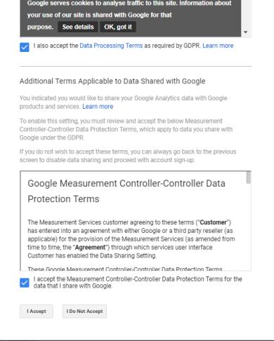 Google Analytics term