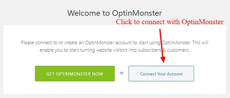 WordPress Website With OptinMonster