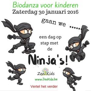 Biodanza voor kinderen - Ninja's