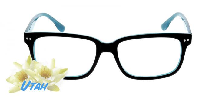 best glasses in utah