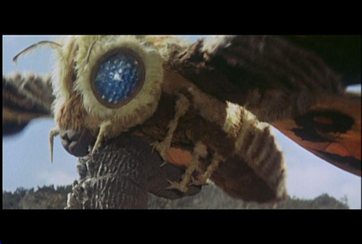Godzilla vs. Mothra   Zenni Optical