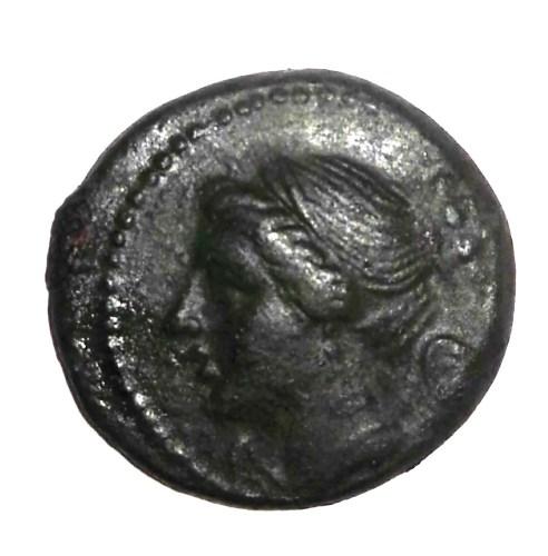 I Greci di Calabria dal VIII sec. a.C.ad oggi del Prof. Filippo Violi - Storico Direttore scientifico IRSSEC (Istituto Regionale Superiore di Studi Ellenofoni della Calabria)