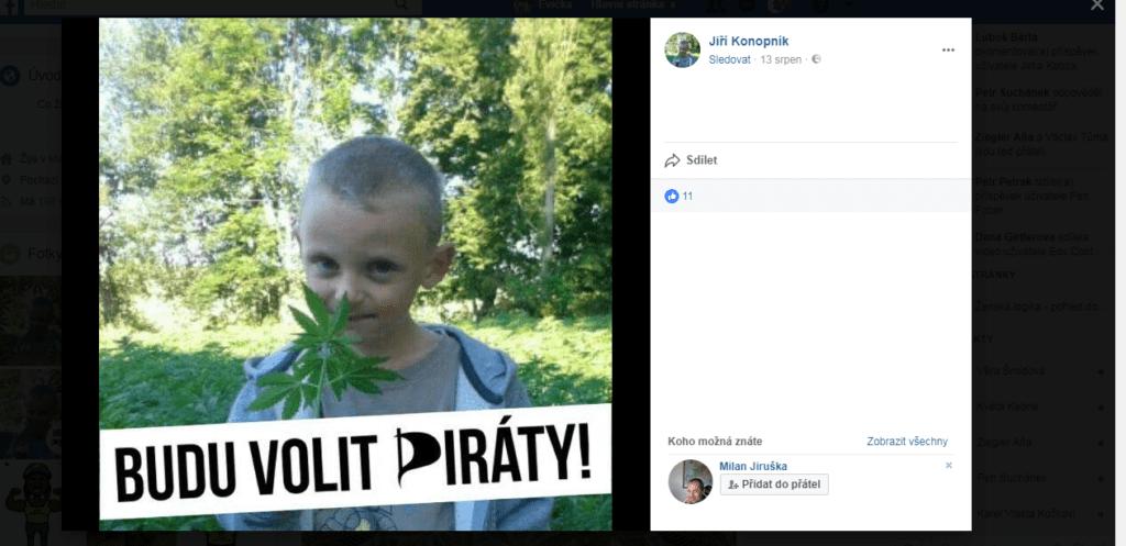 marihuana dětem profily voličů Piráti