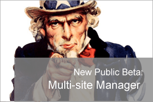 BA Multi-Site Manager