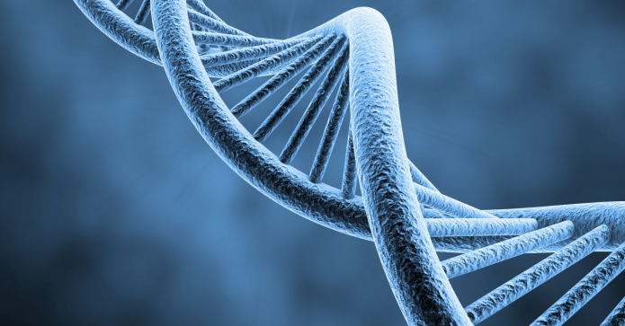 Is DNA Reprogrammable?