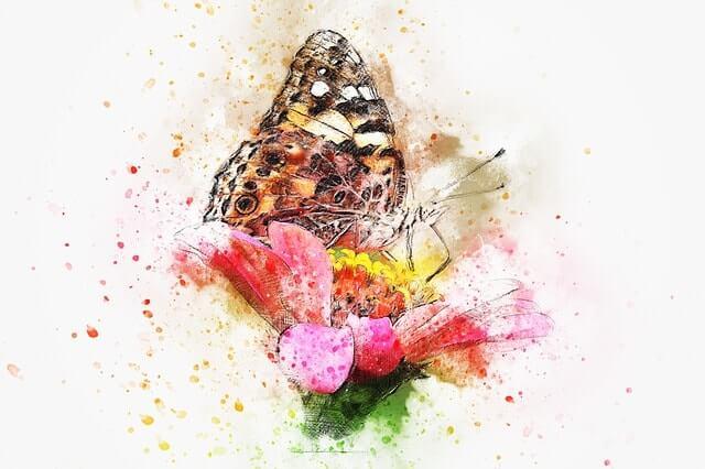 pillangó olajfestmény