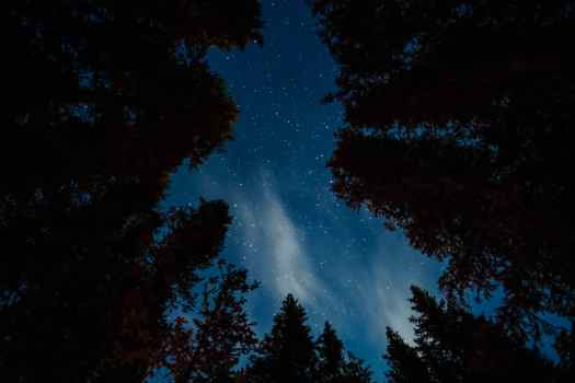 Looking up at the stars in Kananaskis Country