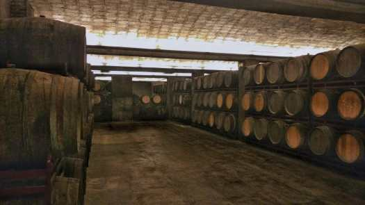 Cava Tours while Cycling in Spain