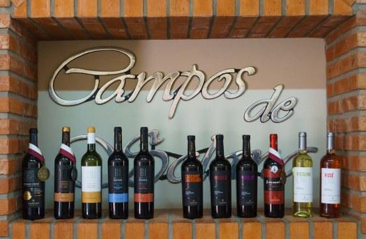 Campos de Solana Wines in Tarija Bolivia