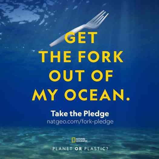 Responsible Travel: Take the Plastic Pledge