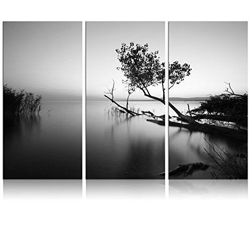 Black and White Canvas Wall Art Peaceful Lake Tree Nature Photograph ...