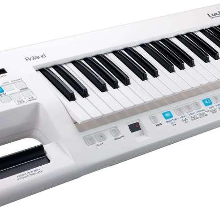 Roland Lucina AX-09 Keytar
