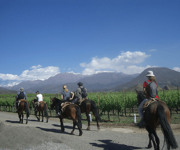 Chile and Argentina Horseback Riding