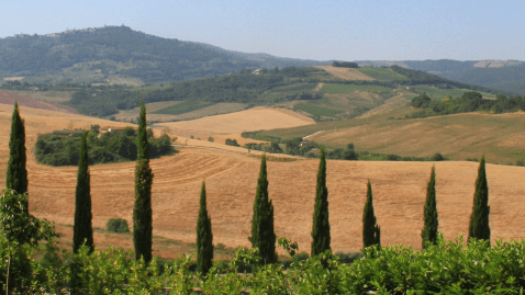 Tuscany Walking Tour