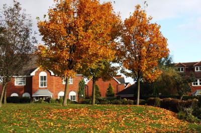 秋の紅葉とリゾート