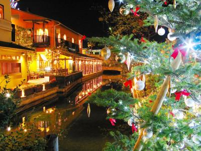 きれいな夜景とクリスマスツリー