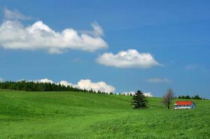 初夏の青空と草原