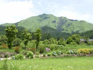 初夏の山々と緑の木々