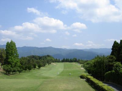 初夏の緑のゴルフ場