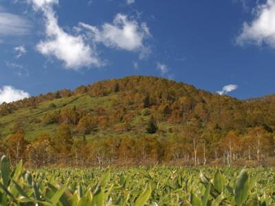 初夏の山々と青空と周辺風景