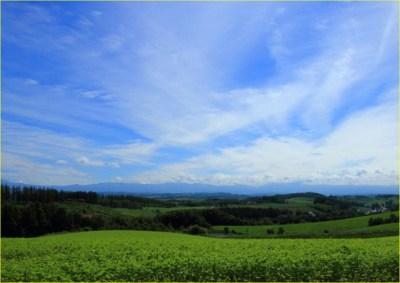 夏の草原と青空