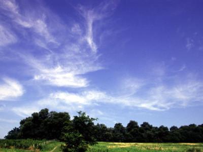 夏の丘と青空
