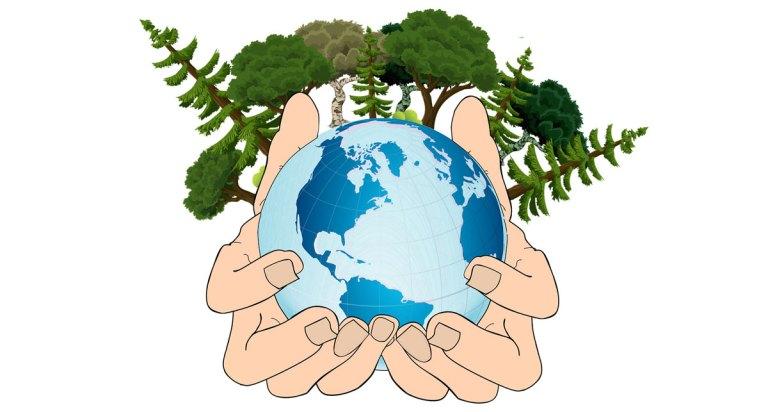 ECOSIA : le moteur de recherche qui plante des arbres !