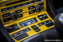Cayman GT4 (2)