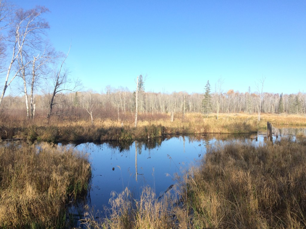 hunting safety - waterbody
