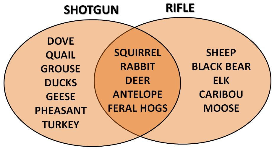 firearms and game animals