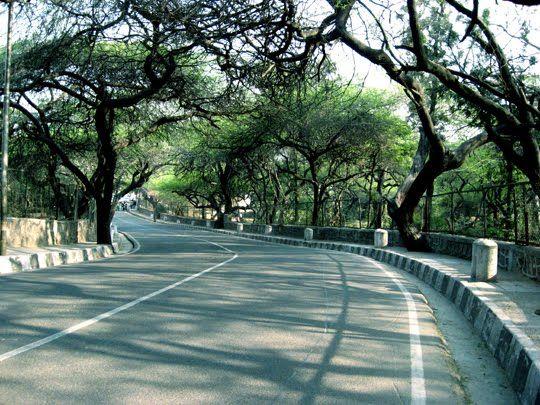 Ridge Road romantic walk delhi