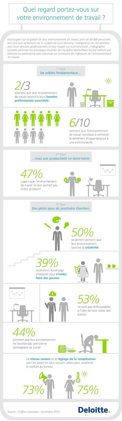 Inforgraphie-work-place 2013