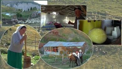 """Photo of VIDEO/ Të jetosh në stan, familjet dibrane që """"shtegtojnë"""" në mal"""