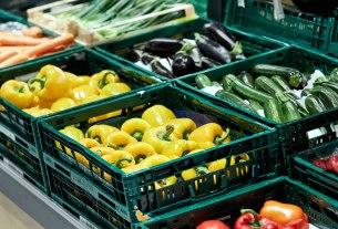 kaufland škola voća i povrća 2020