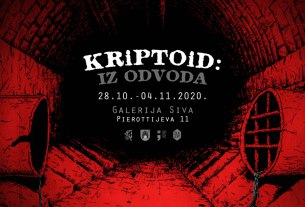 kriptoid - iz odvoda - galerija siva - 2020.