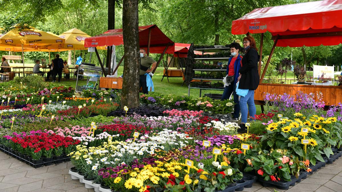 floraart 2021 / bundek zagreb / prodaja cvijeća