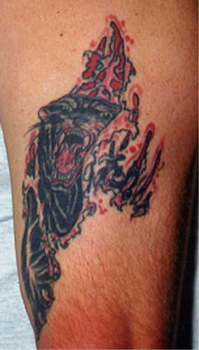 Tattoo Galleries: panther skin rip Tattoo Design
