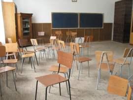 clasaelevigoala