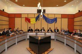 consiliul-judetean-consiliu-consultativ-economic