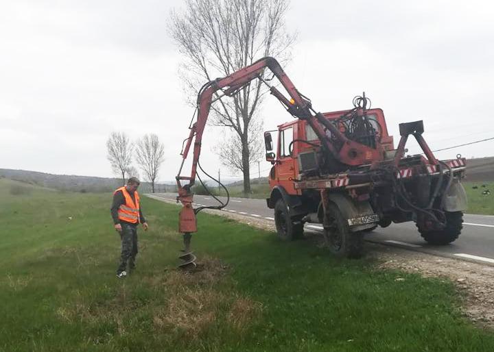 Plantări de puieți în zona drumurilor naționale