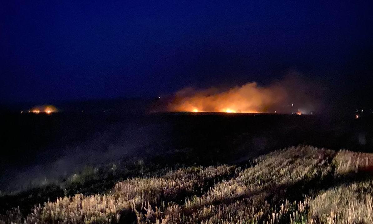 [VIDEO] Incendiu de vegetație uscată pe 40 de hectare, în comuna Bozieni