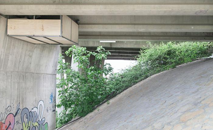 uno studio sotto il ponte