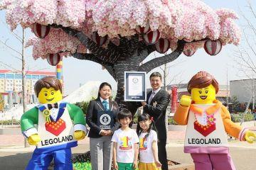 E' nel Guinness  l'albero di ciliegio in fiore composto da oltre 800.000 mattoncini LEGO