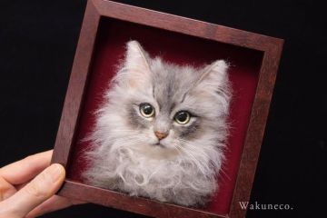 Incredibilmente realistici questi ritratti di gatti fatti col feltro